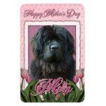 Mothers Day - Pink Tulips - Newfoundland Rectangular Magnet
