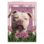 Mothers Day - Pink Tulips - Pitbull - Jersey Girl Cards