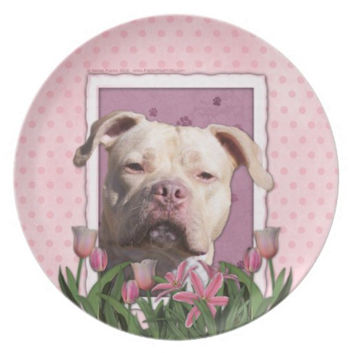 Mothers Day - Pink Tulips - Pitbull - Jersey Girl Party Plates