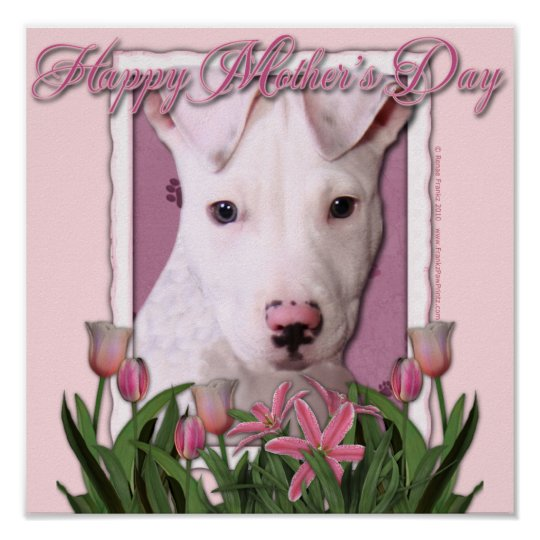 Mothers Day - Pink Tulips - Pitbull Puppy - Petey Poster