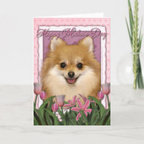 Mothers Day - Pink Tulips - Pomeranian Card