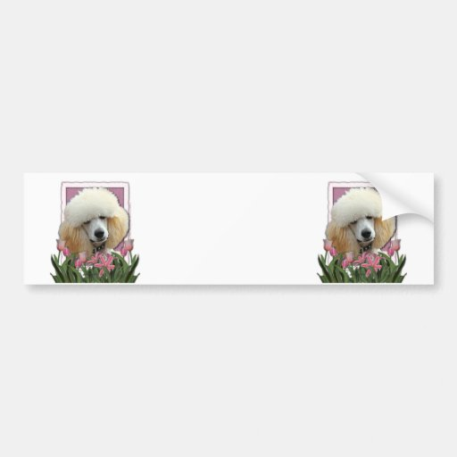 Mothers Day - Pink Tulips - Poodle - Apricot Car Bumper Sticker
