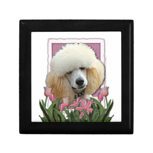 Mothers Day - Pink Tulips - Poodle - Apricot Keepsake Box