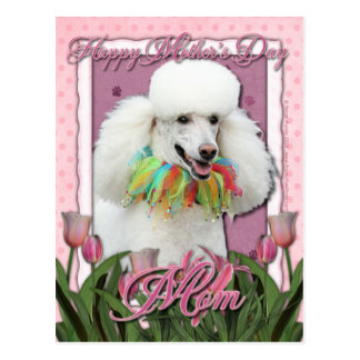 Mothers Day - Pink Tulips - Poodle - White Postcard