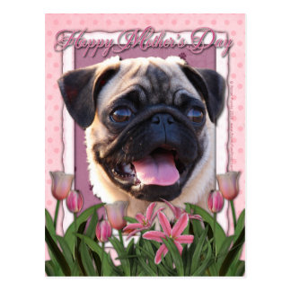 Mothers Day - Pink Tulips - Pug Postcard