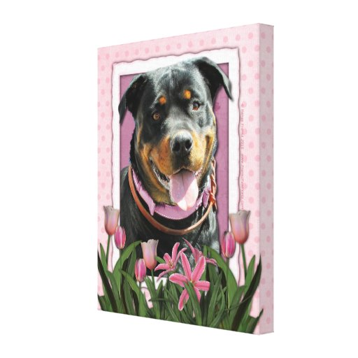 Mothers Day - Pink Tulips - Rottweiler - SambaParT Gallery Wrapped Canvas