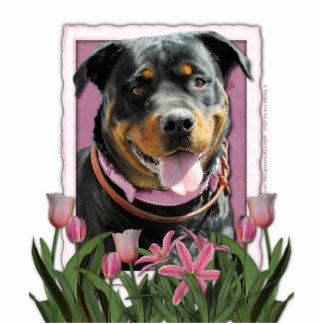 Mothers Day - Pink Tulips - Rottweiler -SambaParTi Statuette