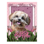 Mothers Day - Pink Tulips - ShihPoo - Maggie Postcard