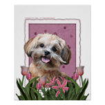 Mothers Day - Pink Tulips - ShihPoo - Maggie Posters
