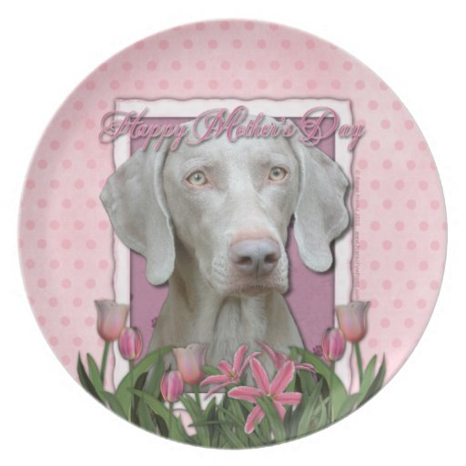 Mothers Day - Pink Tulips - Weimaraner - Gold Eyes Party Plates