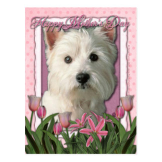 Mothers Day - Pink Tulips - West Highland Terrier Postcard