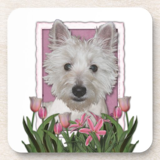 Mothers Day - Pink Tulips - Westie Beverage Coaster