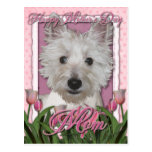 Mothers Day - Pink Tulips - Westie Postcard