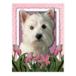 Mothers Day - Pink Tulips - Westie Postcards