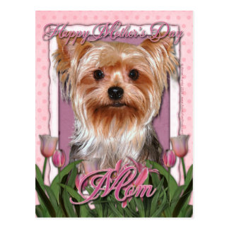Mothers Day - Pink Tulips - Yorkshire Terrier Postcard