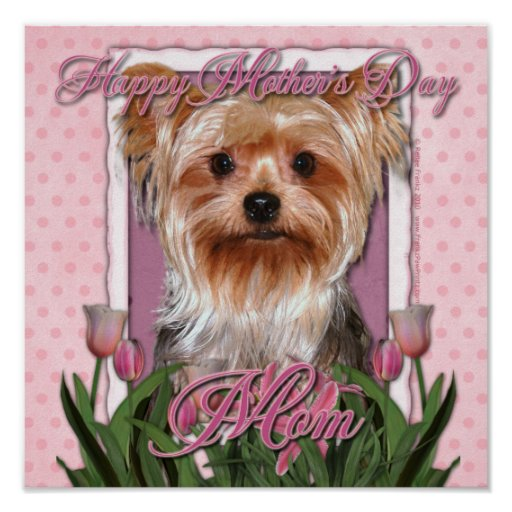 Mothers Day - Pink Tulips - Yorkshire Terrier Posters