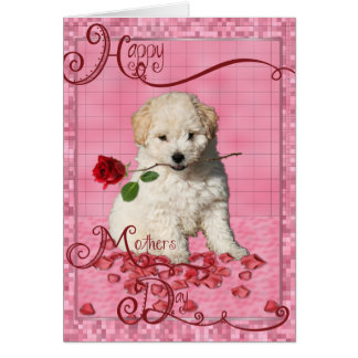 Mothers Day - Red Rose - Bichon Frise Puppy Card