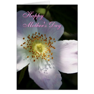 Mothers Day Rosa Canina greetings card