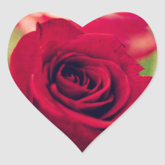 Mothers Day Rose Heart Sticker