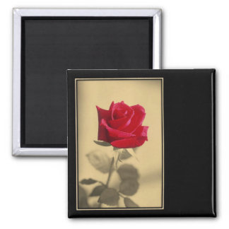Mother's Day Rose Magnet