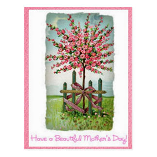 Mother's Day Rose Tree Postcard
