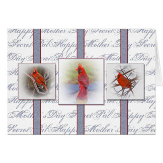 Mother's Day Secret Pal - Cardinals Greeting Cards