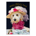 Mother's Day - Secret Pal - Kati's Collection Cards