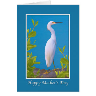Mother's Day, Snowy Egret at the Pond