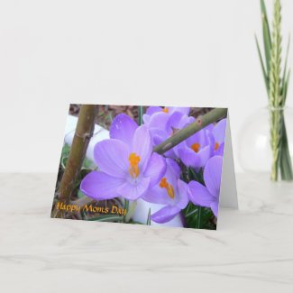 Mother's Day Spring Card card