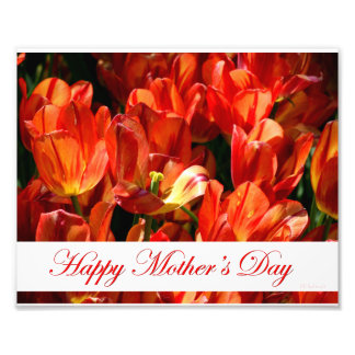 Mother's Day Tulips Print Photographic Print