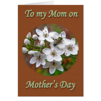 Mother's Day White Wildflower & Bee Fly Card