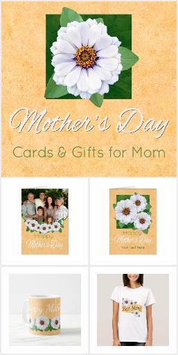 Mother's Day Zinnia Garden
