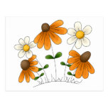 Mother's Flowers · Orange & White Daisies Post Card