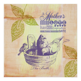 Mothers Love Birds Poster