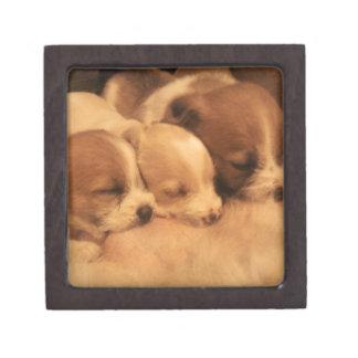 mothers love premium keepsake box