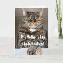 Mothers' s Day From Cat Funny Cute Card