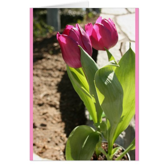 Mother's Tulips Card