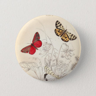 Moths and Butterflies Pinback Button