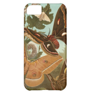 Moths Bugs Insect Nature Butterfly Caterpillar Cover For iPhone 5C