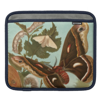 Moths Bugs Insect Nature Butterfly Sleeve For iPads