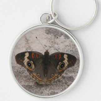Moths wing pattern of a snakes head keychain