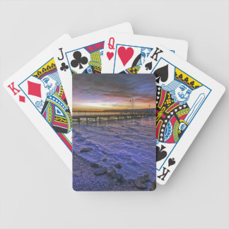 Motionless Emotion Bicycle Playing Cards