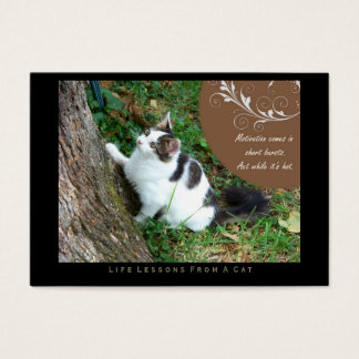 Motivation Life Lessons From a Cat ACEO Art Cards