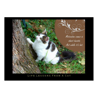 Motivation Life Lessons From a Cat ACEO Art Cards Business Card