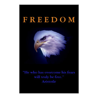 Motivational Freedom Courage Eagle Poster Print