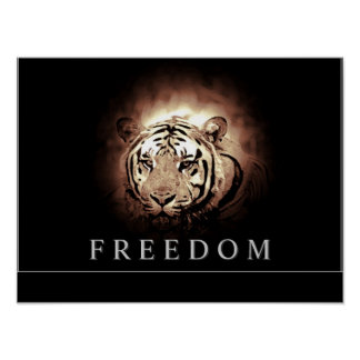 Motivational Freedom Eyes of Tiger Poster Print