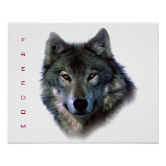 Motivational Freedom Grey Wolf Poster Print