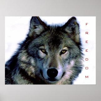 Motivational Freedom Wolf Eyes Poster Print