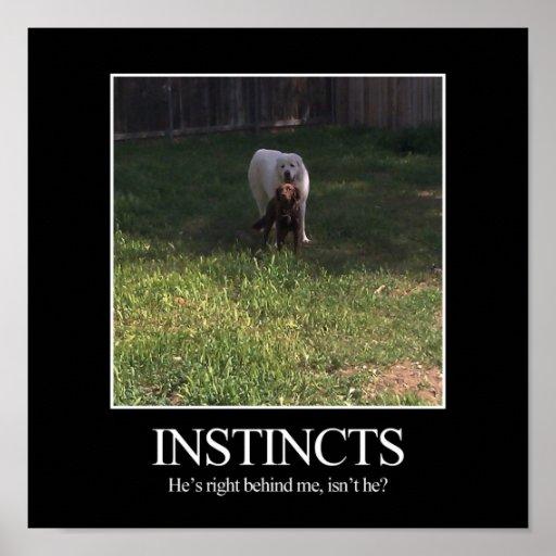 Motivational Poster, INSTINCTS Poster