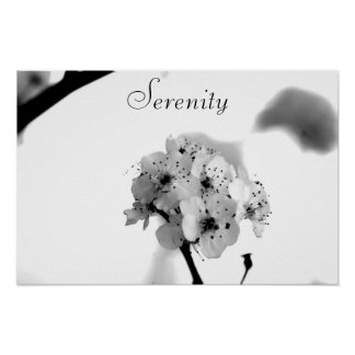 Motivational Poster-Serenity Poster